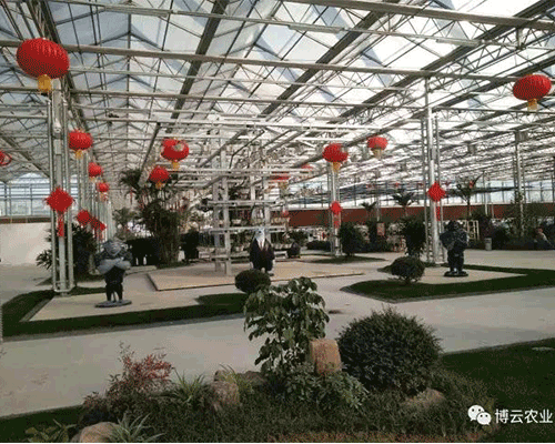 临沂奥正生态观光园无土栽培项目