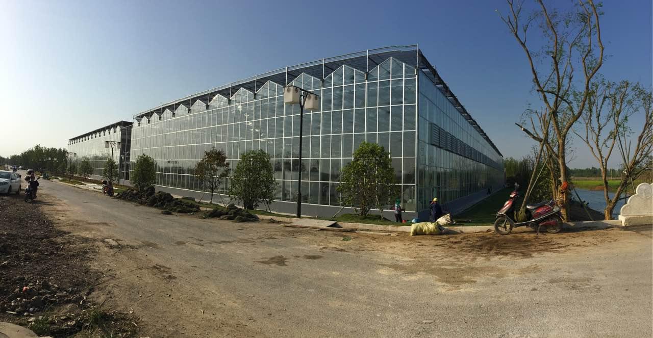 江苏阜宁国家农业公园两万平米智能温室水肥一体化项目