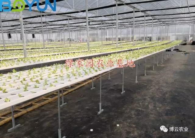 福建尤溪绿家园2000亩水肥一体化