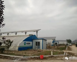 泰安昌盛日电无土栽培项目