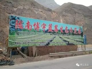 甘肃陇南--蓝莓水肥一体化项目