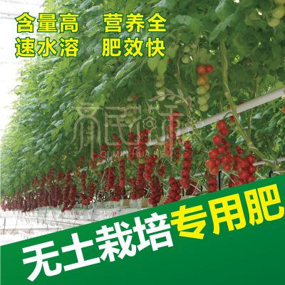 无土栽培椰糠岩棉水培专用辣椒黄瓜番茄草莓专用水溶肥