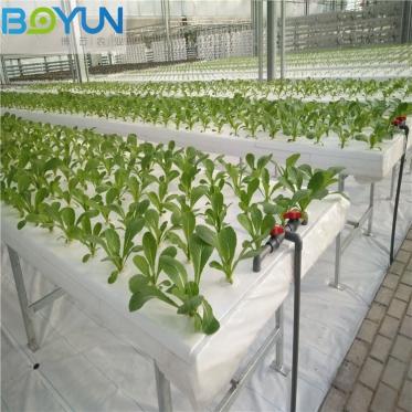 重庆深液流(DFT)无土栽培工程 博云设计规划智慧农业