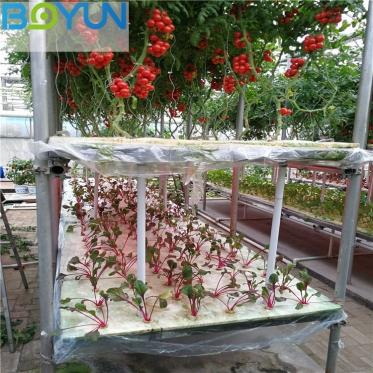 安徽无土栽培工程之浅液流(NFT)水培蔬菜模式及技术