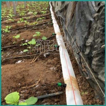 山东农用水带厂家批发高分子耐高压耐腐蚀白色2到8寸pe编织水带