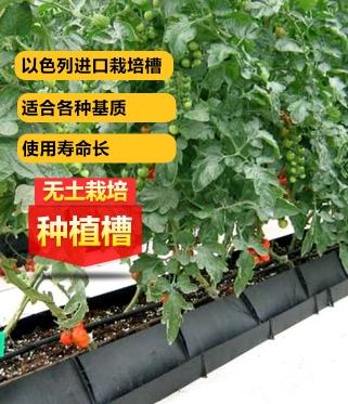 以色列进口无土栽培种植槽模式